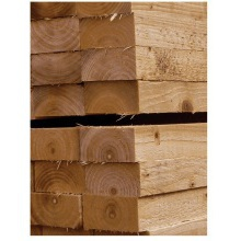 Imp Stamped Treated Timber Lath/Batten 25 x 38mm x 1.0m