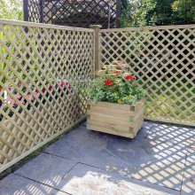 Alderley Lattice Trellis