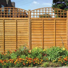 Dome Top Trellis