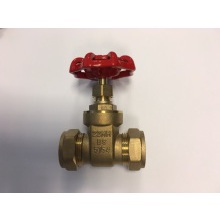 SG 22mm Brass BS5154 Gate Valve