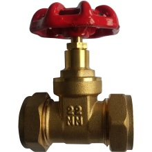 SG 22mm Brass Non BS Gate Valve