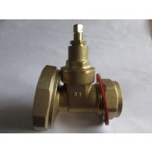 SG 22mm Gate Type Pump Valve
