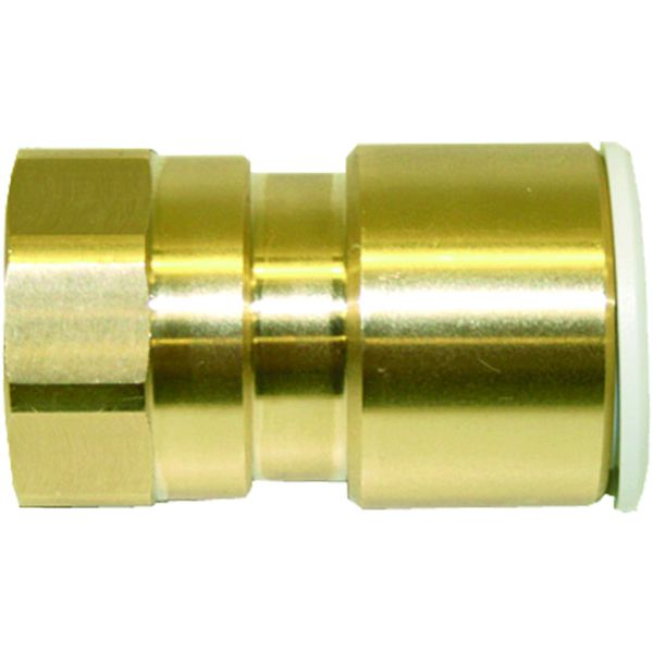 "Speedfit 22mm X 3/4"" BSP Female Adaptor"