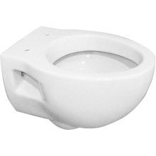Suregraft Aroza Wall Hung Pan White
